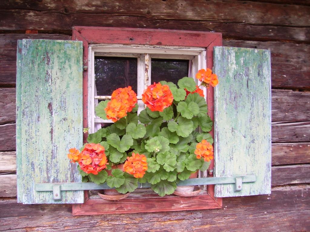 salzburg ablak ismerősök